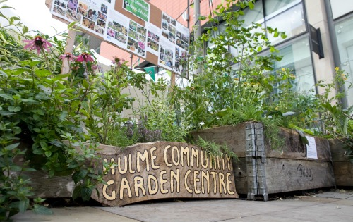 Why Community Gardening is Blooming