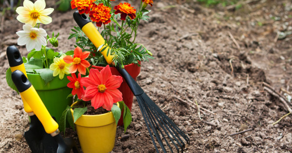 Get Your Garden Winter Ready