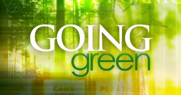 What Can Small Businesses do to be Green?