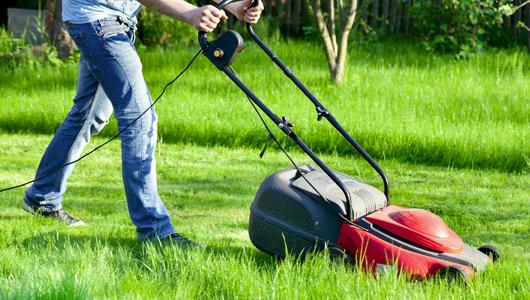Reducing your garden's carbon footprint