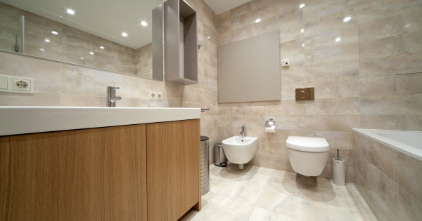 Remodel your bathroom despite being on a tight budget – Some lucrative ideas